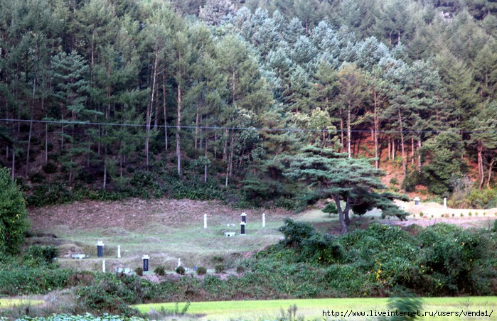 корейский обряд похорон