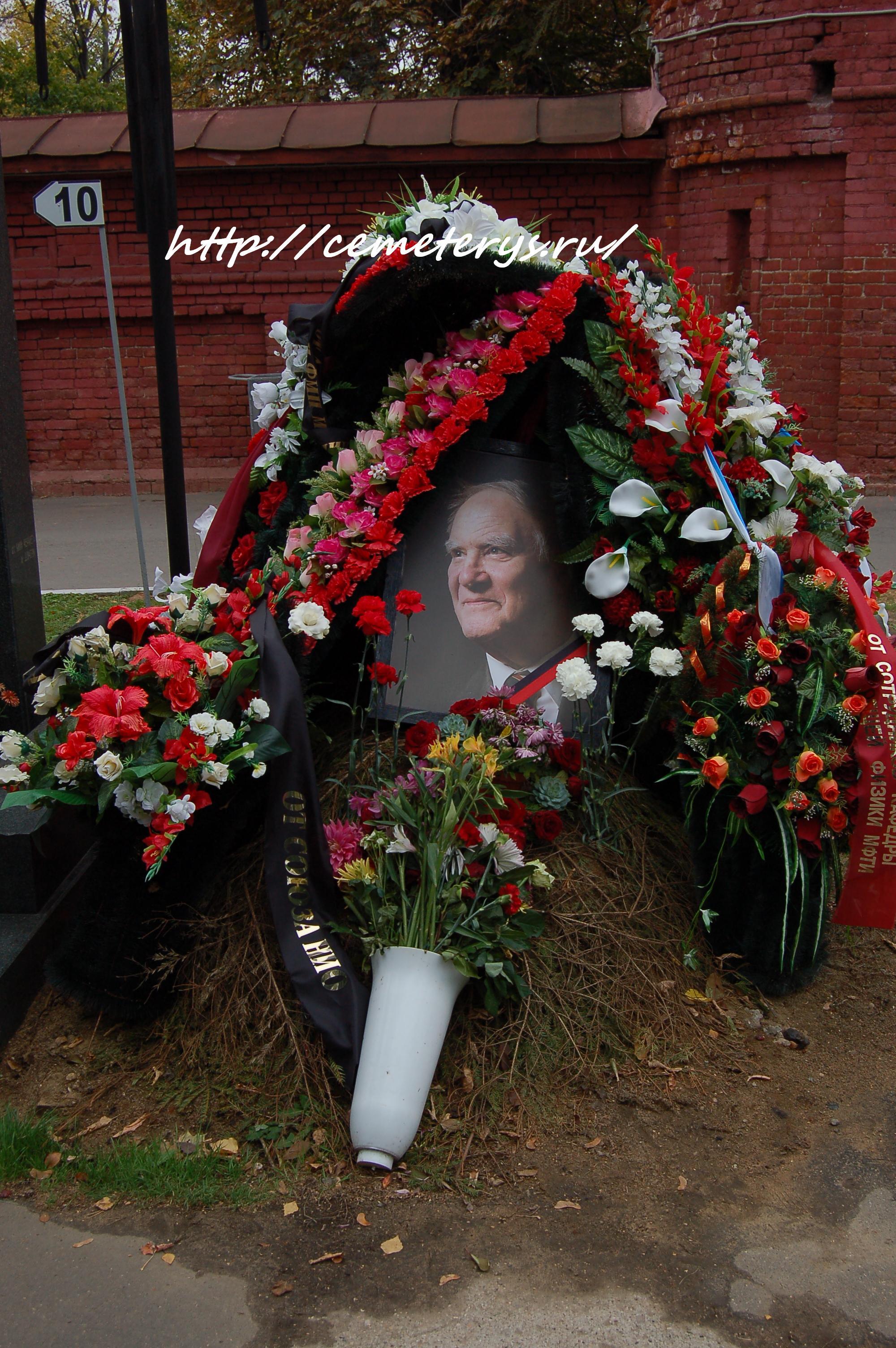 могила Сергея Капицы на Новодевичем кладбище в Москве ( фото Дмитрия Кондратьева)