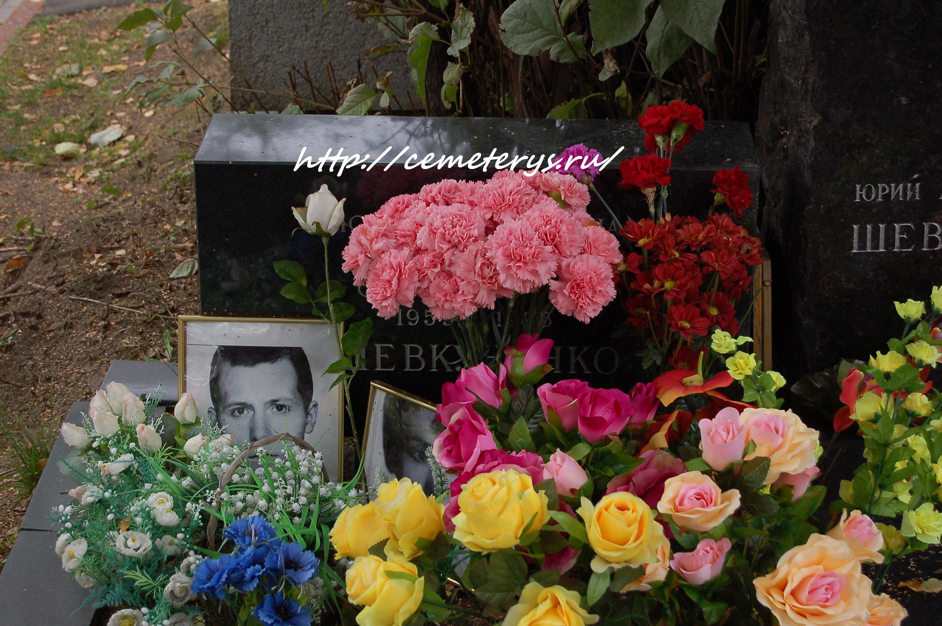 могила Сергея Шевкуненко на Новодевичем кладбище в Москве ( фото Дмитрия Кондратьева)