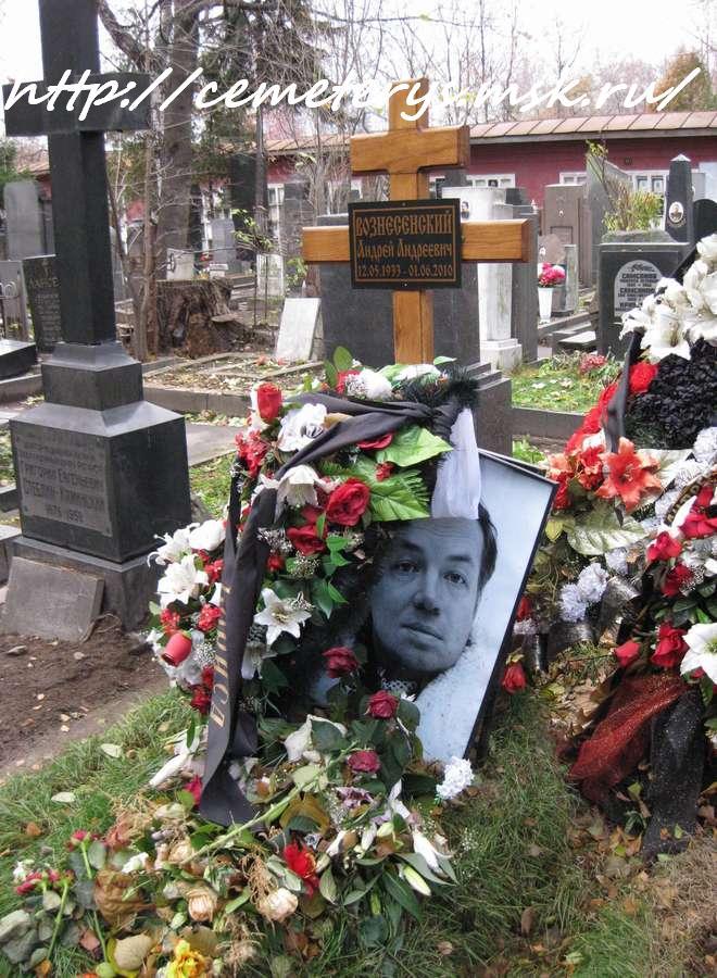 могила Андрея Вознесенского на Новодевичем кладбище в Москве (вид могилы до установки памятника)(фото Дмитрия Кондратьева)