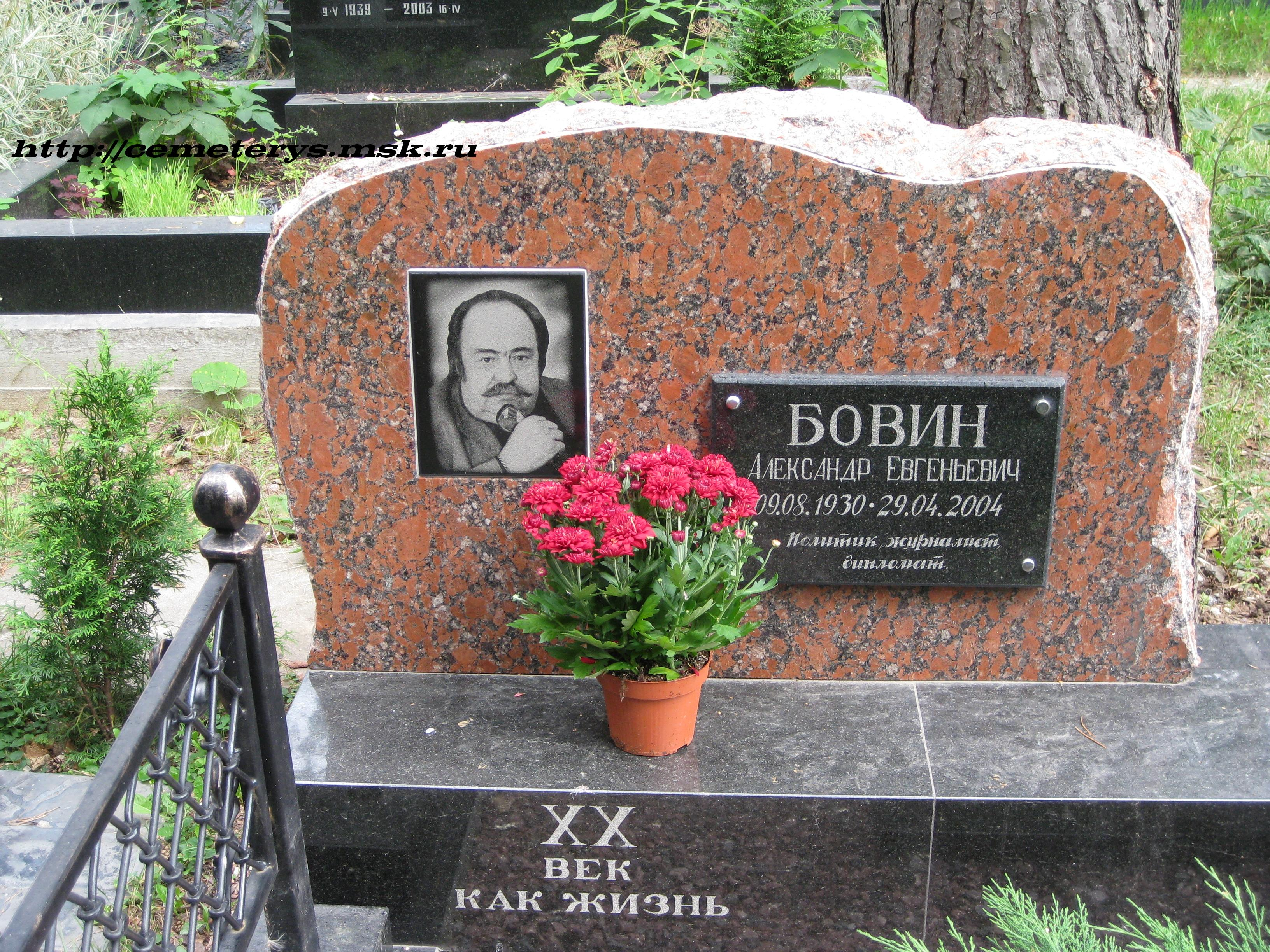 могила А. Бовина