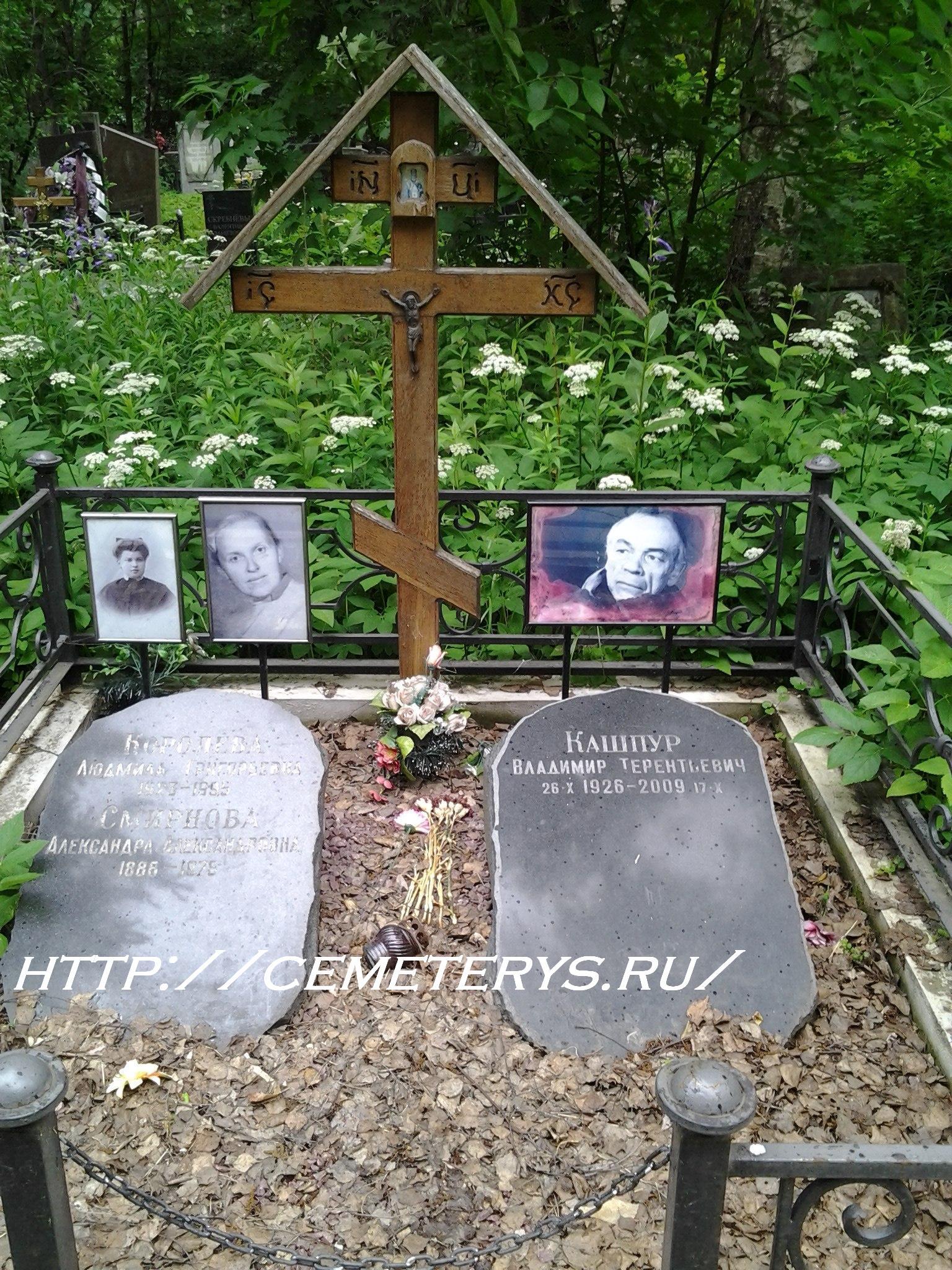 могила Владимира Кашпура на Долгопрудненском кладбище в Московской области ( фото Дмитрия Кондратьева)