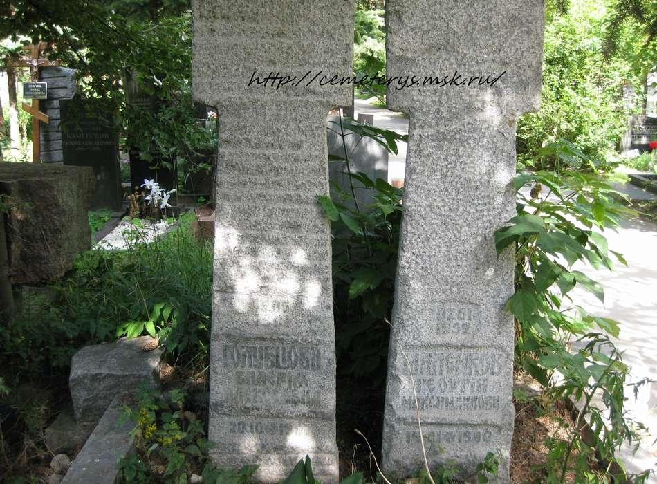 могила Георгия Маленкова  (фото Дмитрия Кондратьева )