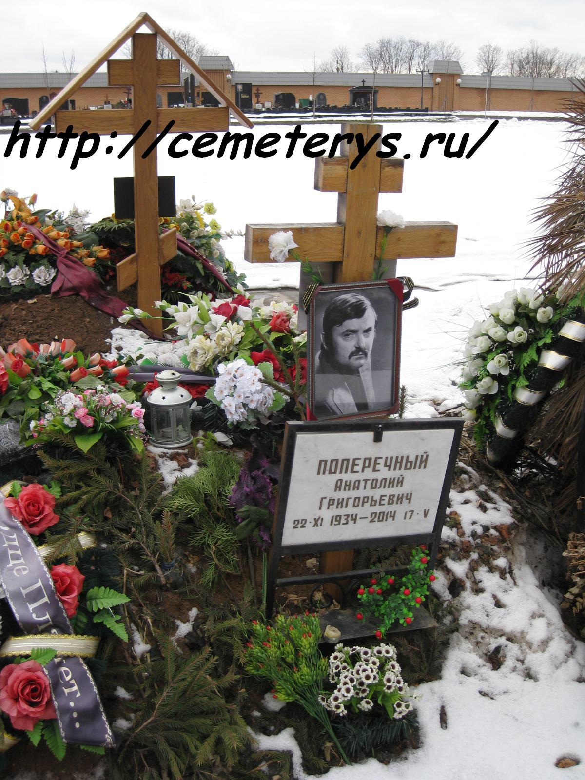 могила Анатолия Поперечного на Троекуровском кладбище в Москве ( фото Дмитрия Кондратьева)